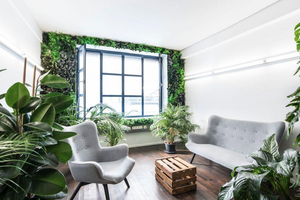 stylegreen pflanzen